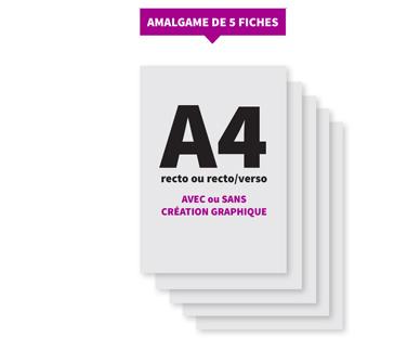 Amalgame de 5 fiches A4